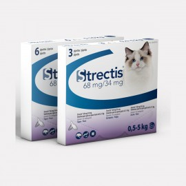 STRECTIS pipettes anti puces chat 0.5-5KG 6 PIP