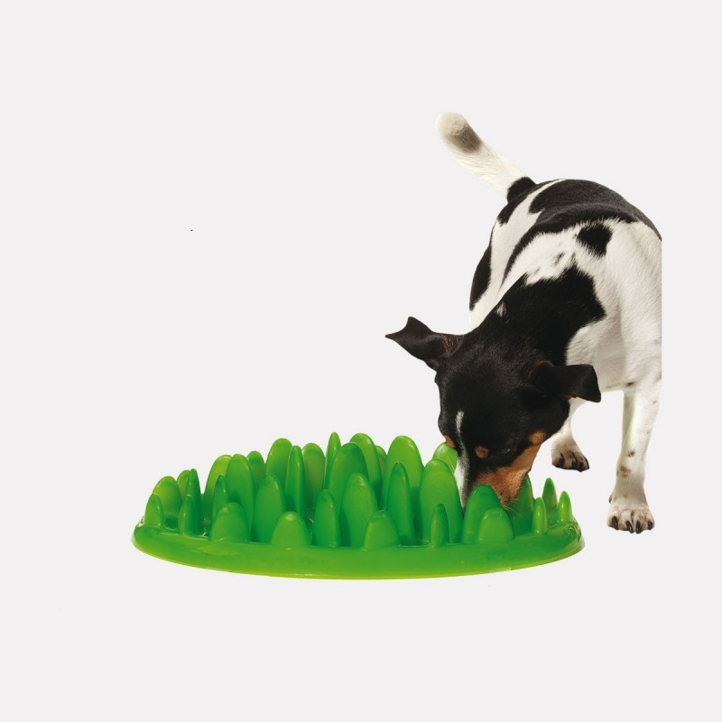 gamelle anti glouton pour chien 10 petits z bres. Black Bedroom Furniture Sets. Home Design Ideas