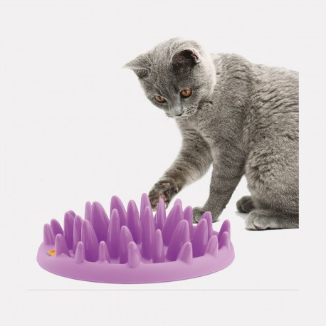 GAMELLE ANTI GLOUTON CHAT