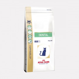 ROYAL CANIN Chat DENTAL