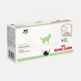 ROYAL CANIN Chaton PEDIATRIC WEANING Mousse - 12 boîtes de 195g