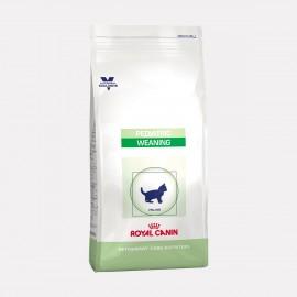 ROYAL CANIN Chaton PEDIATRIC WEANING