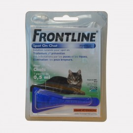 FRONTLINE CHAT SO 1 PIP