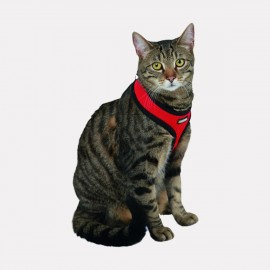 HARNAIS CHAT ACTIVE ROUGE