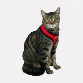 Harnais et Laisse pour chat Confortable et Léger ACTIVE ROUGE