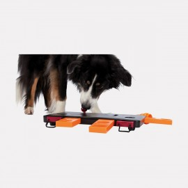 Jouet d'éveil pour chien Move to win