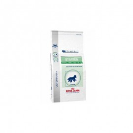 ROYAL CANIN Chien PEDIATRIC STARTER SMALL