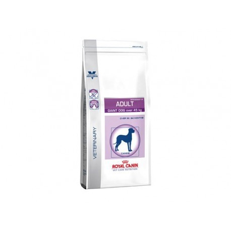 ROYAL CANIN Chien ADULT GIANT