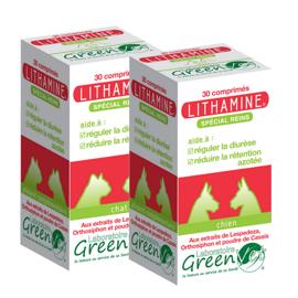 Greenvet Lithamine Renal Chien - 1 boite de 30 cp